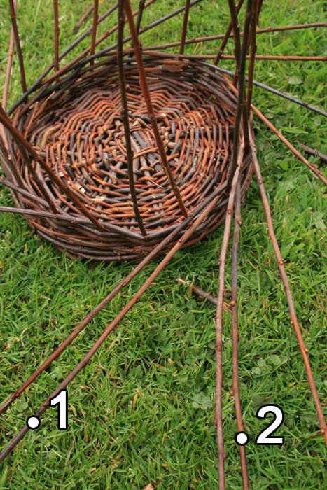 Заготовка для плетения корзин из ивы